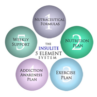 5 Elements of the Insulite Diabetes Advanced Management System